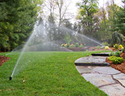 Lawn Care in Needham Mass